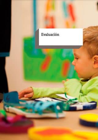 Análisis internacional 2011. Evaluación.