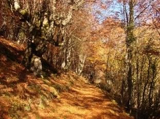 El Monte Hijedo será el gran protagonista de las Jornadas Europeas de Patrimonio